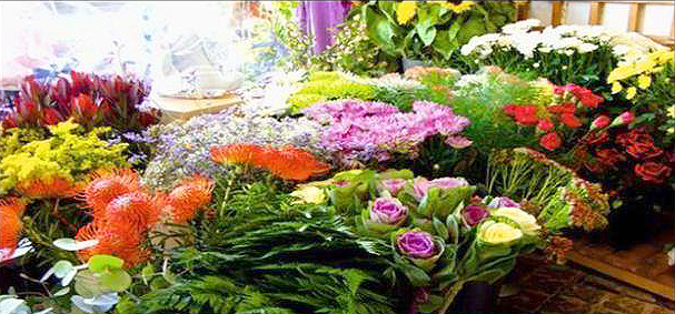 Fingas florist flower display